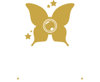 Skylight Snapshots: Brisbane Professional Photographer