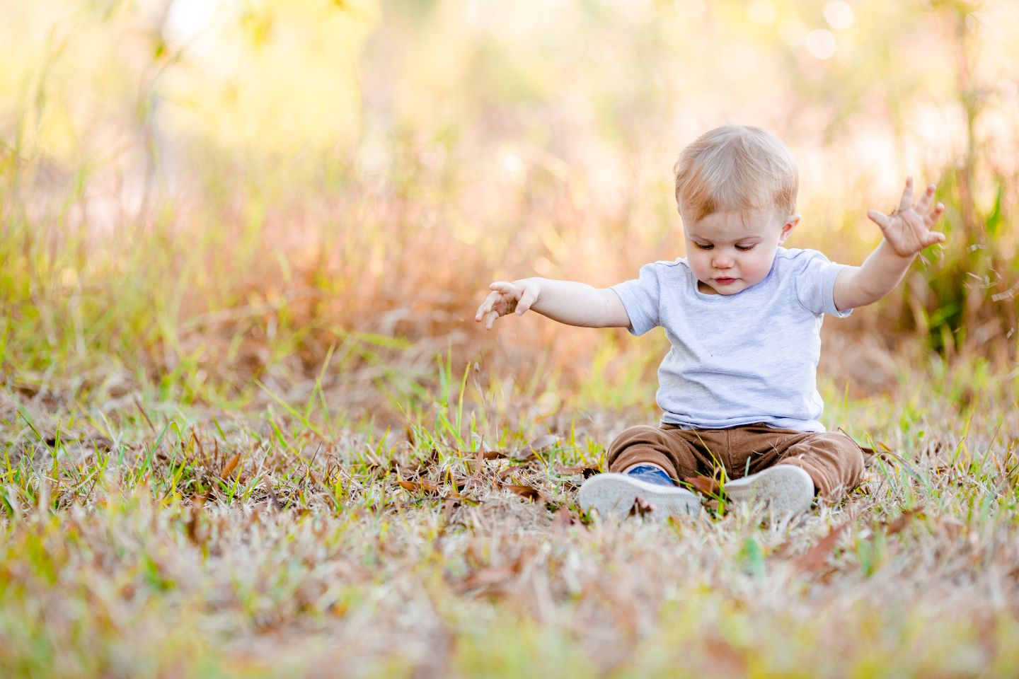 A boy looks surprised as he stares at the leaves below him at CREEC in Burpengary.